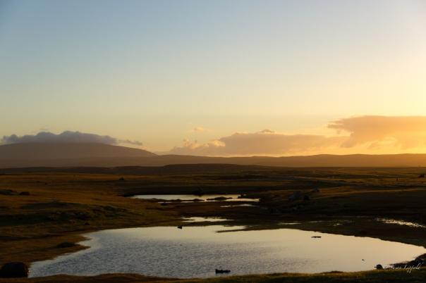 shetlandislands-1